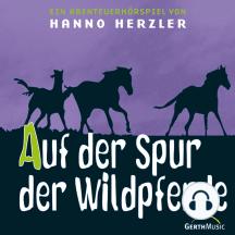 Auf der Spur der Wildpferde (Wildwest-Abenteuer 1): Kinder-Hörspiel