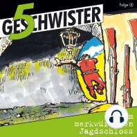 Im merkwürdigen Jagdschloss (5 Geschwister 9)