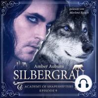 Silbergrau, Episode 9 - Fantasy-Serie
