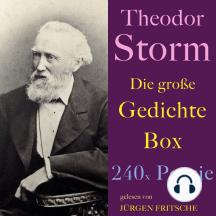 Theodor Storm: Die große Gedichte Box: 240 x Poesie