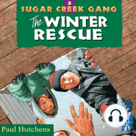 The Winter Rescue