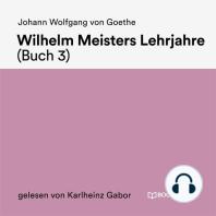 Wilhelm Meisters Lehrjahre (Buch 3)