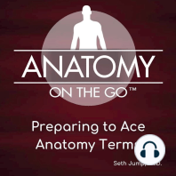 Preparing To Ace Anatomy Terms