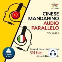 Audio Parallelo Cinese Mandarino: Impara il cinese mandarino con 501 Frasi utilizzando l'Audio Parallelo - Volume 1