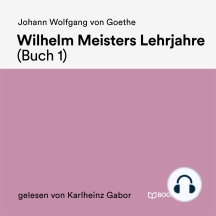Wilhelm Meisters Lehrjahre (Buch 1)