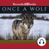 Once a Wolf