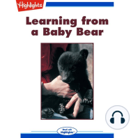Learning from a Baby Bear