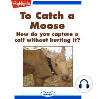 To Catch a Moose