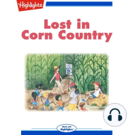 Lost in Corn Country