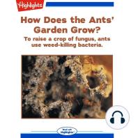 How Does the Ants' Garden Grow?