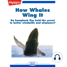 How Whales Wing It