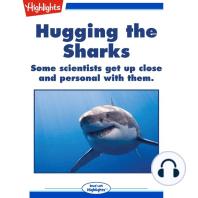 Hugging the Sharks