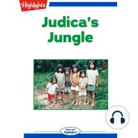 Judica's Jungle