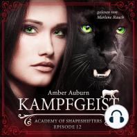 Kampfgeist, Episode 12 - Fantasy-Serie