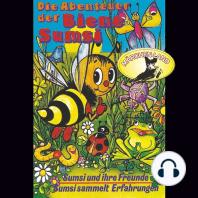 Die Abenteuer der Biene Sumsi, Folge 1