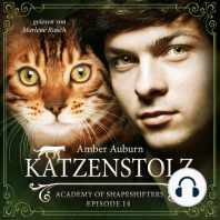 Katzenstolz, Episode 14 - Fantasy-Serie
