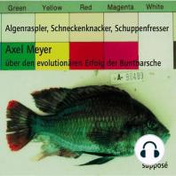 Algenraspler, Schneckenknacker, Schuppenfresser