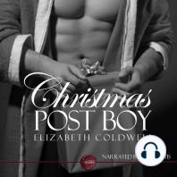 Christmas Post Boy