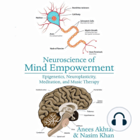 Neuroscience of Mind Empowerment