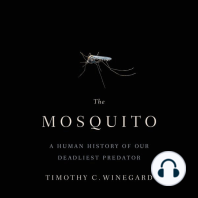 The Mosquito