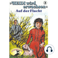 Heidi, Heidi wird erwachsen, Folge 3