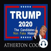 Trump 2020: The Candidates Non-Fake History