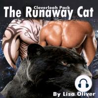 The Runaway Cat