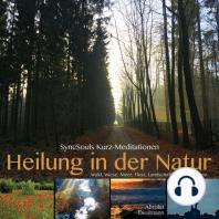 Heilung in der Natur - SyncSouls Kurzmeditationen
