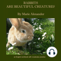 Rabbits Are Beautiful Creatures: An English Workbook With Vocabulary Practice - Beginner