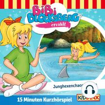 Bibi Blocksberg Kurzhörspiel - Bibi erzählt: Junghexenchaos am See