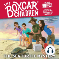 The Sea Turtle Mystery