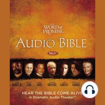 Word of Promise Audio Bible, The - New King James Version, NKJV: (24) Matthew
