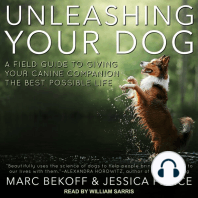 Unleashing Your Dog