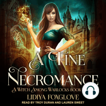 A Fine Necromance: A Witch Among Warlocks Book Three