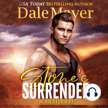 Stone's Surrender: Book 2: Heroes For Hire
