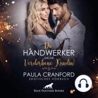 Die Handwerker und die verdorbene Kundin! / Erotik Audio Story / Erotisches Hörbuch