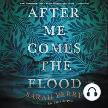 After Me Comes the Flood: A Novel