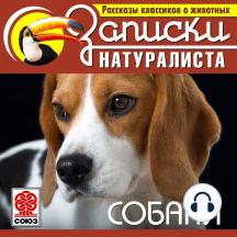Рассказы классиков о животных. Собаки