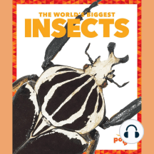 The World's Biggest Insects