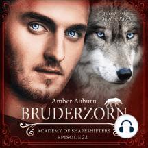 Bruderzorn, Episode 22 - Fantasy-Serie: Academy of Shapeshifters