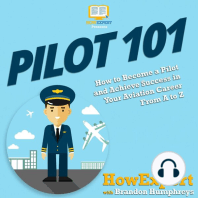 Pilot 101