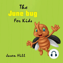 The June bug For Kids