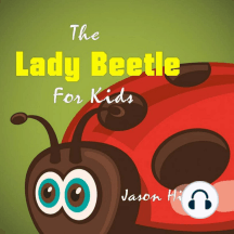 Lady Beetle For Kids