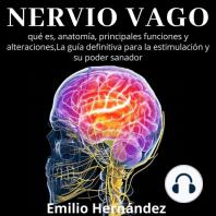 Nervio Vago: qué es, anatomía, principales funciones y alteraciones, La guía definitiva para la estimulación y su poder sanador.