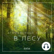 Атмосферные звуки – В лесу: Saga Sounds