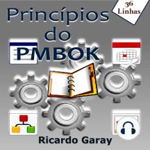 Princípios do PMBOK