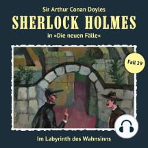 Sherlock Holmes, Die neuen Fälle, Fall 29: Im Labyrinth des Wahnsinns