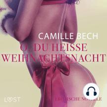O, du heiße Weihnachtsnacht: Erotische Novelle