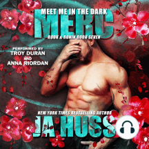 Meet Me in the Dark: The Merc Book
