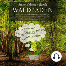 Stress abbauen durch Waldbaden: Wie wir durch den Wald Erschöpfung vorbeugen, Gelassenheit lernen und innere Ruhe finden, um bewusst und ausgeglichen zu leben
